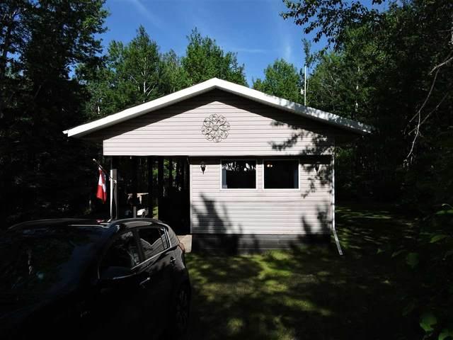 240 11502 TWP 604, Rural St. Paul County, AB T0A 0C0 (#E4201845) :: Initia Real Estate
