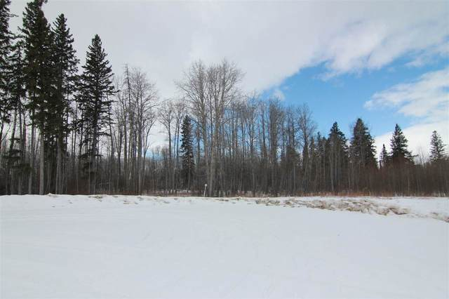 19 54406 Rge Rd 15, Rural Lac Ste. Anne County, AB T0E 1V0 (#E4202105) :: The Foundry Real Estate Company