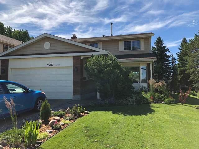 3507 Hill View Crescent, Edmonton, AB T6L 1P4 (#E4204828) :: RE/MAX River City