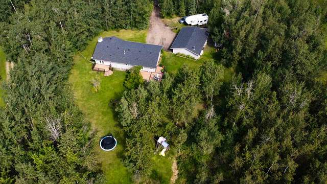218 51308 RGE RD 224, Rural Strathcona County, AB T8C 1H3 (#E4209606) :: Initia Real Estate