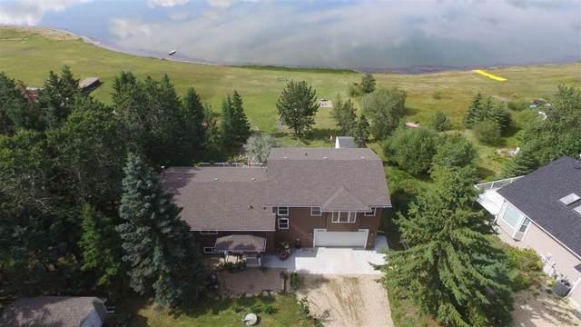642 22113 TWP RD 440, Rural Camrose County, AB T0B 1M0 (#E4211828) :: Initia Real Estate