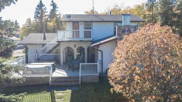 462064A Hwy 771, Rural Wetaskiwin County, AB T0C 2V0 (#E4217484) :: Initia Real Estate