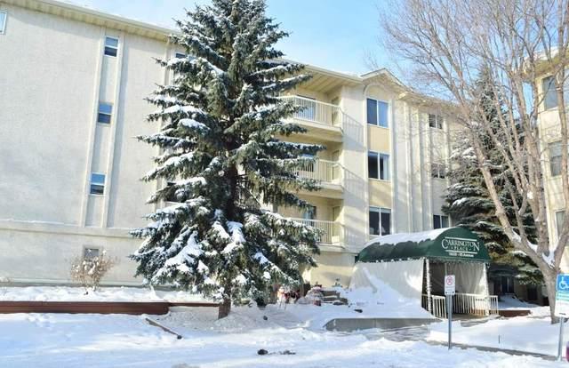 401 18020 95 Avenue, Edmonton, AB T5T 6B2 (#E4217844) :: The Foundry Real Estate Company