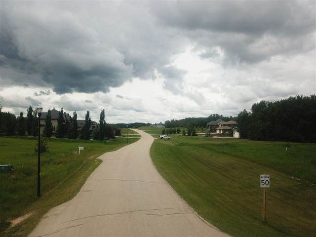 17 51222 RGE RD 260, Rural Parkland County, AB T7Y 1B7 (#E4218239) :: Initia Real Estate
