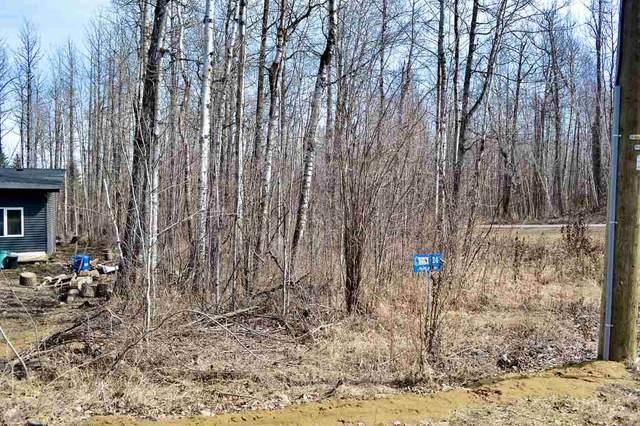 24 Hazel Avenue, Rural Lac Ste. Anne County, AB T0E 0L0 (#E4232414) :: Initia Real Estate