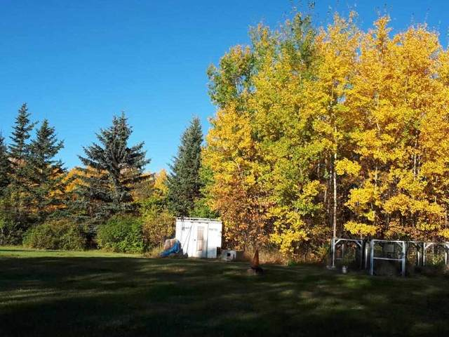 RR 134 TWP 570, Rural Two Hills County, AB T0B 4K0 (#E4235275) :: Initia Real Estate