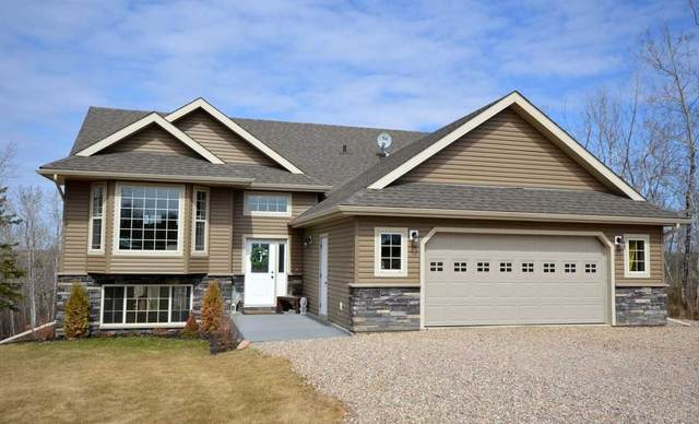 111 46304 Twp Rd 610, Rural Bonnyville M.D., AB T9N 2J6 (#E4241618) :: Initia Real Estate