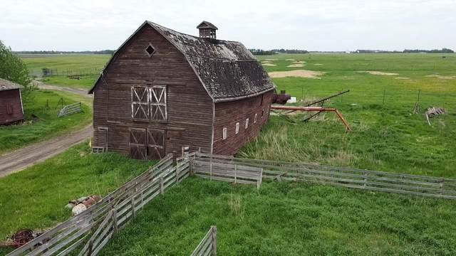 49102B Rge Rd 273, Rural Leduc County, AB T0C 2V0 (#E4242752) :: The Foundry Real Estate Company