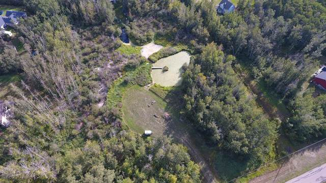 240 50446 RGE RD 232, Rural Leduc County, AB T4X 0L1 (#E4244692) :: The Foundry Real Estate Company