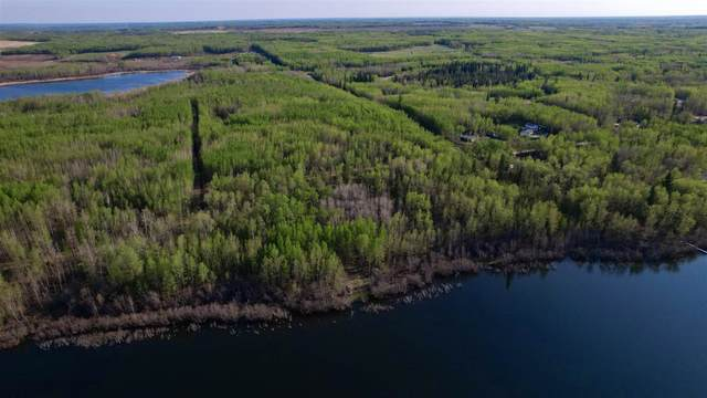 RR 21 Twp 565A Lake Nakamun, Rural Lac Ste. Anne County, AB T0G 0H0 (#E4246330) :: The Foundry Real Estate Company