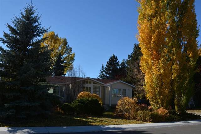 8360 120 Street, Edmonton, AB T6G 1X2 (#E4247729) :: Initia Real Estate
