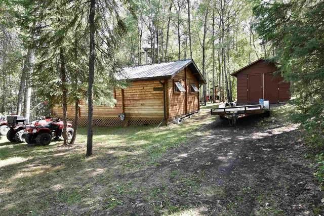 449, 11121 TWP RD 595, Rural St. Paul County, AB T0A 0C0 (#E4256462) :: Initia Real Estate