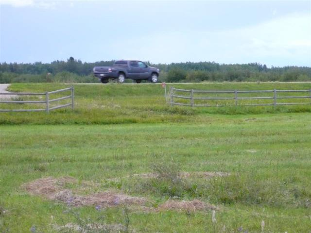 RR73 Twp 494, Rural Brazeau County, AB T7A 2A2 (#E4034878) :: RE/MAX River City