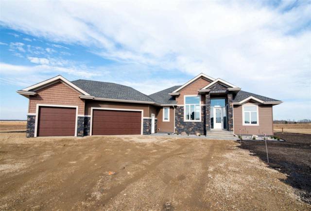 40 50509 RR 222, Rural Leduc County, AB T0B 3M0 (#E4133416) :: The Foundry Real Estate Company
