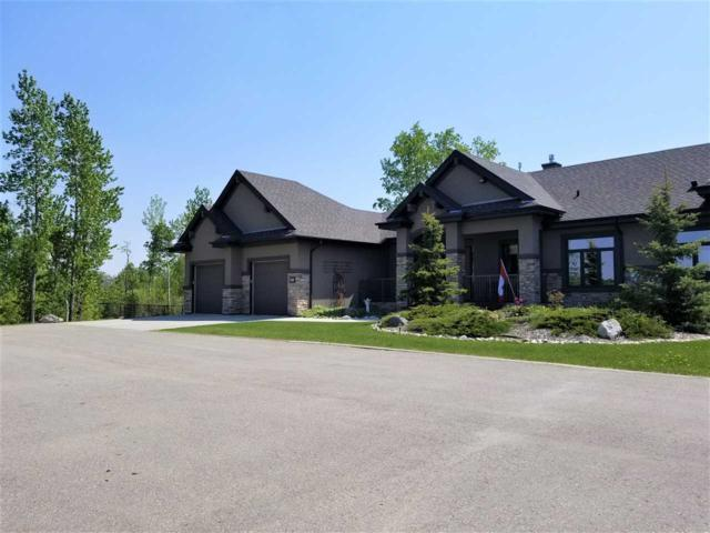 5B 53521 RGE RD 272, Rural Parkland County, AB T7X 3M5 (#E4136042) :: David St. Jean Real Estate Group