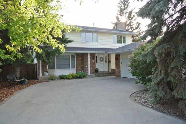 16223 Patricia Drive, Edmonton, AB T5N 5N3 (#E4146853) :: David St. Jean Real Estate Group