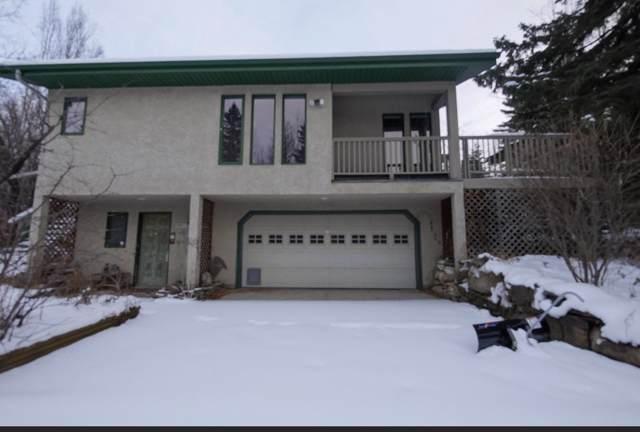 5-460002 Hwy 771, Rural Wetaskiwin County, AB T0C 2V0 (#E4149699) :: Initia Real Estate