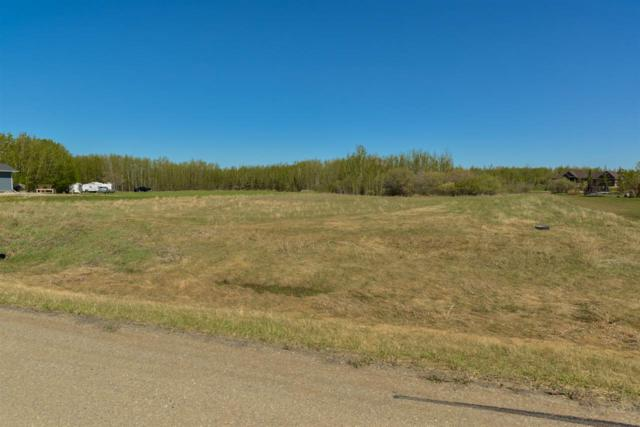 63 53521 RGE RD 272, Rural Parkland County, AB T7X 3N2 (#E4155202) :: David St. Jean Real Estate Group