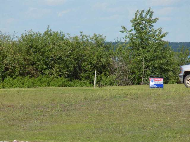 1 Sunset Harbour, Rural Wetaskiwin County, AB T0C 1H0 (#E4161228) :: Initia Real Estate
