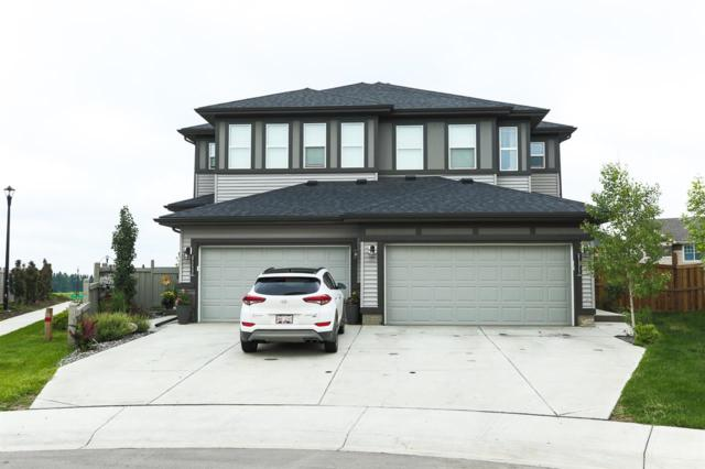8555 Cushing Place, Edmonton, AB T6W 3L2 (#E4162899) :: Jenn McPhillamey | YEGPro Realty