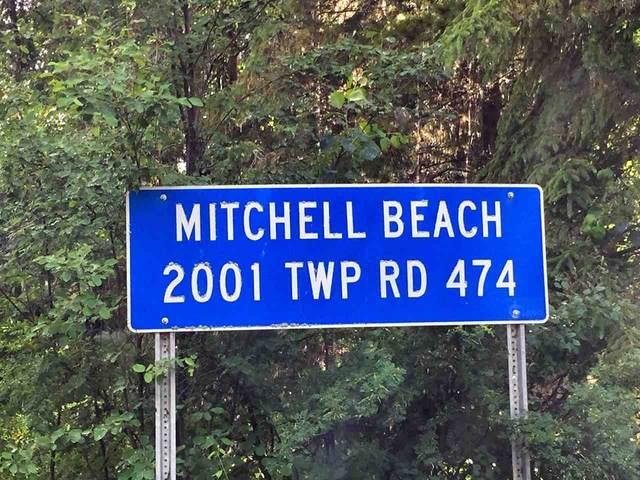 2130 2001 TWP RD  474, Rural Leduc County, AB T0C 2P0 (#E4203834) :: Initia Real Estate