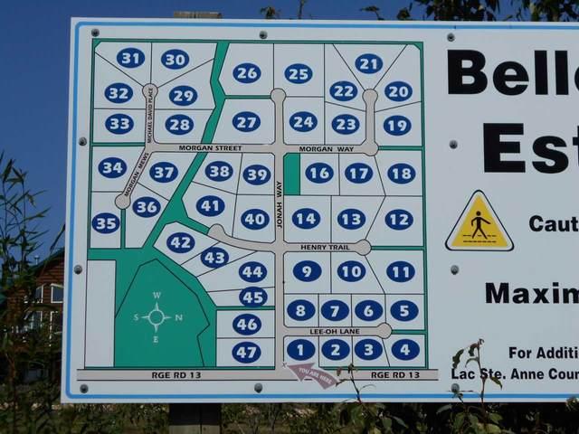 22 Morgan Way, Rural Lac Ste. Anne County, AB T0E 0V0 (#E4209833) :: Initia Real Estate