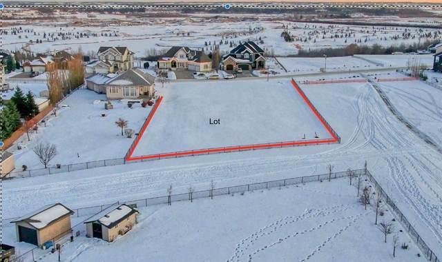 16208 3 Street, Edmonton, AB T5Y 2Z6 (#E4221892) :: Initia Real Estate
