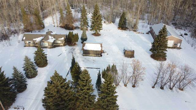 2702 58 Avenue, Rural Wetaskiwin County, AB T0C 2C0 (#E4222567) :: The Foundry Real Estate Company