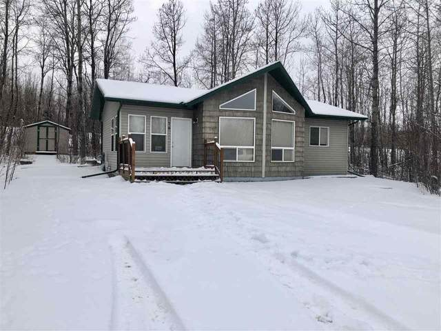 69 15065 TWP RD 470, Rural Wetaskiwin County, AB T0C 2V0 (#E4227352) :: RE/MAX River City