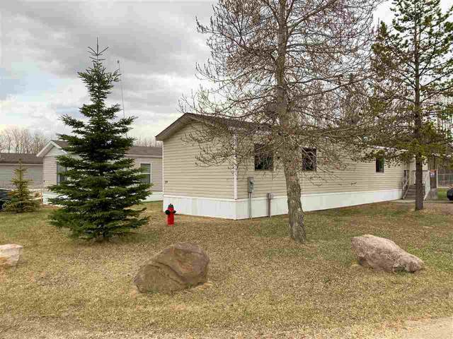 39 Village Green Mhp, Warburg, AB T0C 2T0 (#E4227869) :: Initia Real Estate