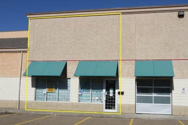 16912 111 AV NW, Edmonton, AB T5M 4C9 (#E4249557) :: Initia Real Estate