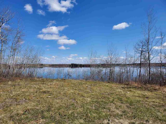212 61121 Rge Rd 464- Silver Ridge, Rural Bonnyville M.D., AB T9N 2H7 (#E3413259) :: Initia Real Estate