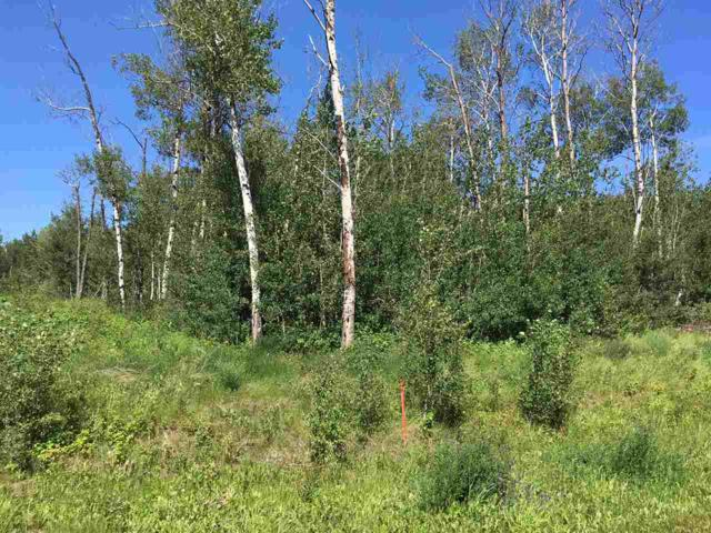 Lot 6 645048 Rge Rd 200, Rural Athabasca County, AB T0A 0M0 (#E4069751) :: Initia Real Estate