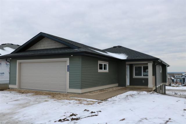 212 55101 Ste Anne Trail, Rural Lac Ste. Anne County, AB T0E 1A0 (#E4116369) :: The Foundry Real Estate Company