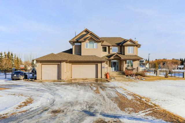 111 206 Street, Edmonton, AB T6M 2S3 (#E4126763) :: The Foundry Real Estate Company