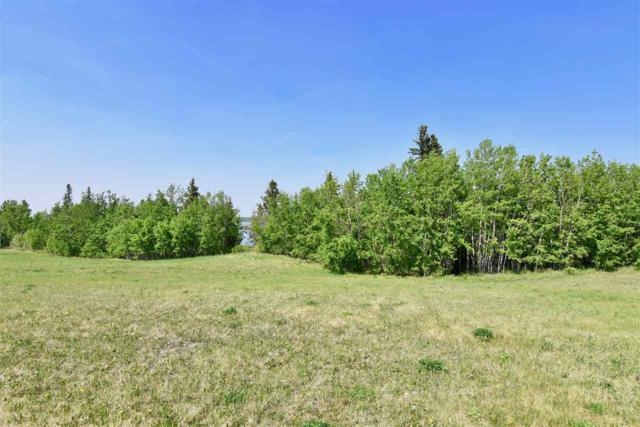 256 57201 Rng Rd 102, Rural St. Paul County, AB T0A 2G0 (#E4133276) :: Mozaic Realty Group