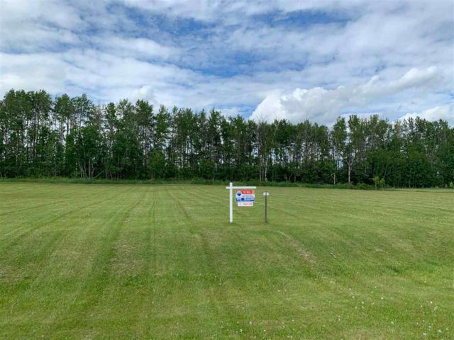24-53414 Range Road 62, Rural Lac Ste. Anne County, AB T0E 0S0 (#E4147661) :: David St. Jean Real Estate Group