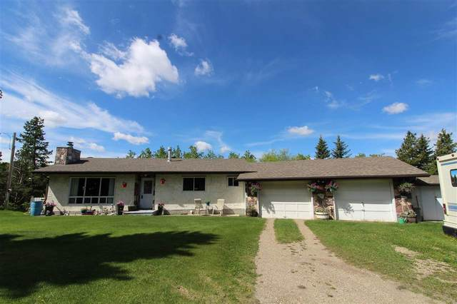 464030 Rge Rd 243, Rural Wetaskiwin County, AB T0C 1C0 (#E4187550) :: RE/MAX River City