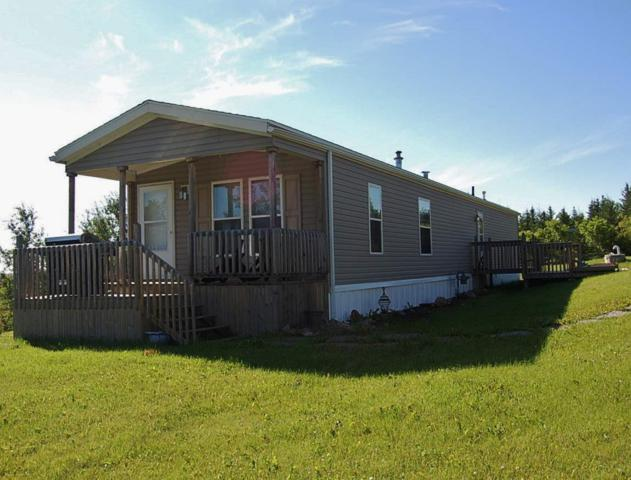 128 Russel Drive, Rural St. Paul County, AB T0A 3A0 (#E4040593) :: The Foundry Real Estate Company