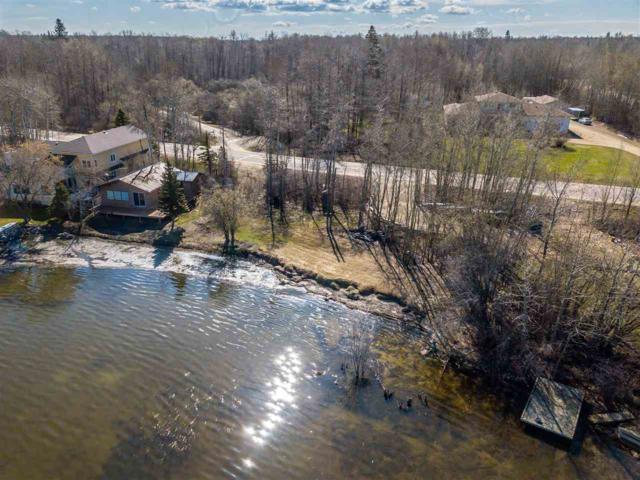 54502 Ste Anne Trail, Rural Lac Ste. Anne County, AB T0E 0A0 (#E4140127) :: Mozaic Realty Group