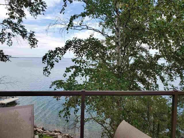 217 Lakeshore Drive, Rural Wetaskiwin County, AB T0C 2V0 (#E4209809) :: Initia Real Estate