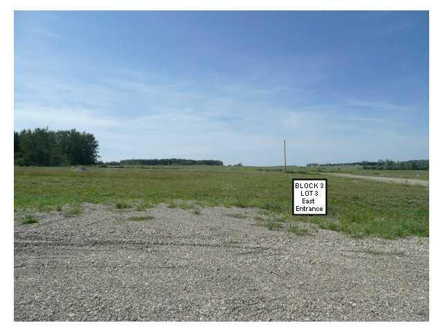 216 9th St West, Buck Lake, Rural Wetaskiwin County, AB T0C 0T0 (#E4054385) :: The Foundry Real Estate Company