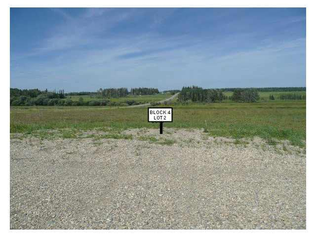 915 3rd Ave West, Buck Lake, Rural Wetaskiwin County, AB T0C 0T0 (#E4054386) :: The Foundry Real Estate Company