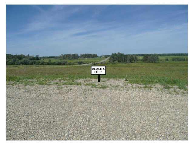915 3rd Ave West, Buck Lake, Rural Wetaskiwin County, AB T0C 0T0 (#E4054386) :: Müve Team | RE/MAX Elite