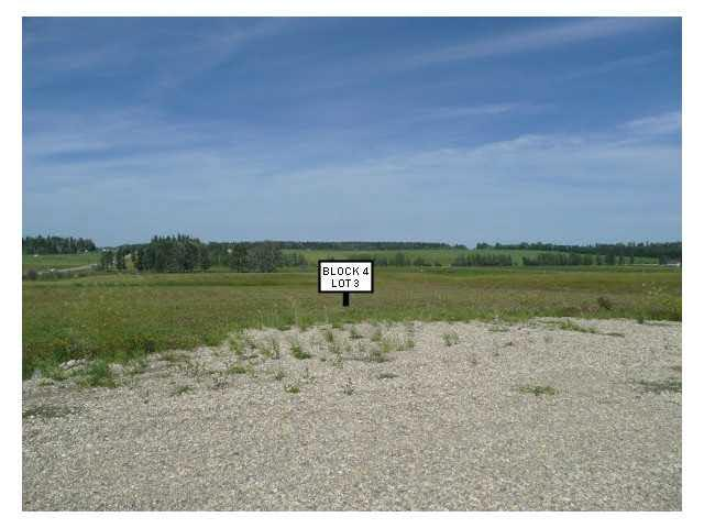 901 3rd Ave West, Buck Lake, Rural Wetaskiwin County, AB T0C 0T0 (#E4054387) :: The Foundry Real Estate Company