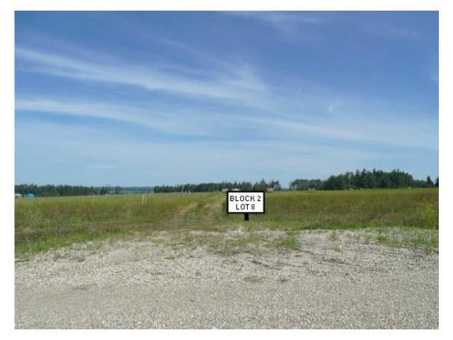 215 9th St West, Buck Lake, Rural Wetaskiwin County, AB T0C 0T0 (#E4054390) :: The Foundry Real Estate Company