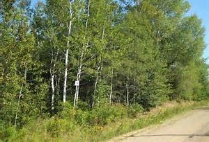 2 63220 RGE RD 433, Rural Bonnyville M.D., AB T9M 1P2 (#E4093082) :: The Foundry Real Estate Company