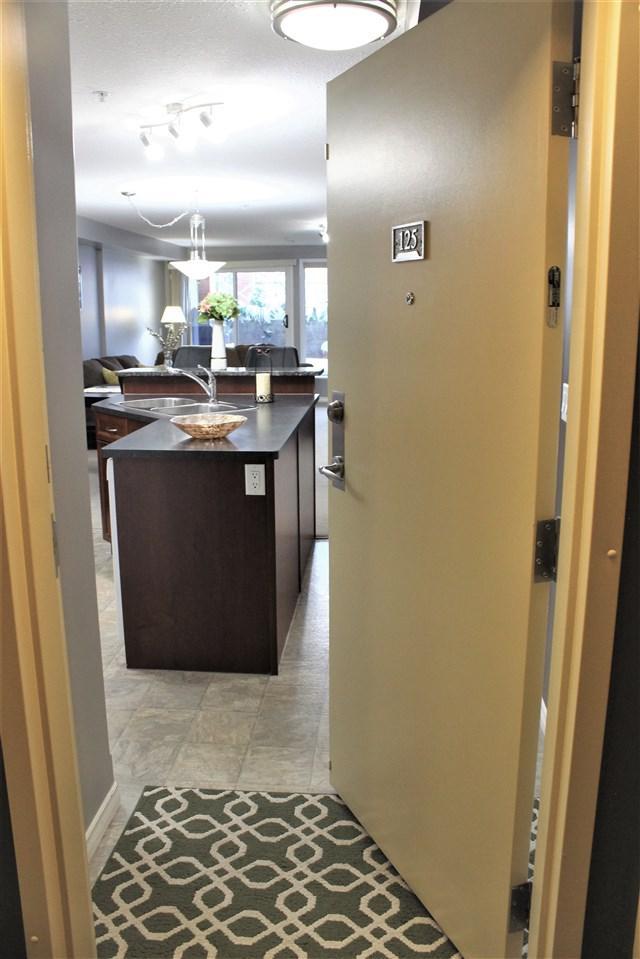 125 7510 89 Street, Edmonton, AB T6C 0X5 (#E4098552) :: The Foundry Real Estate Company