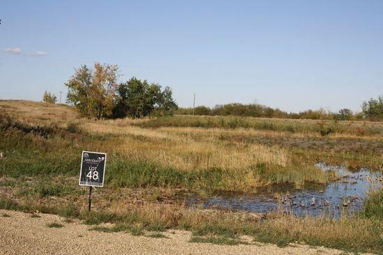 225 50072  RGE RD 205, Rural Camrose County, AB T0B 0M0 (#E4102686) :: The Foundry Real Estate Company