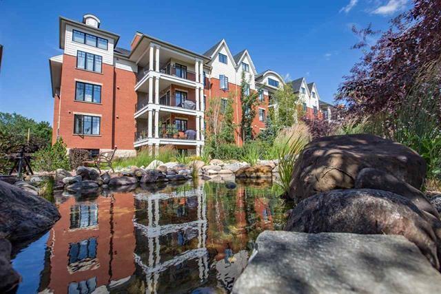307 9815 96A Street NW, Edmonton, AB T6A 4A3 (#E4107356) :: GETJAKIE Realty Group Inc.